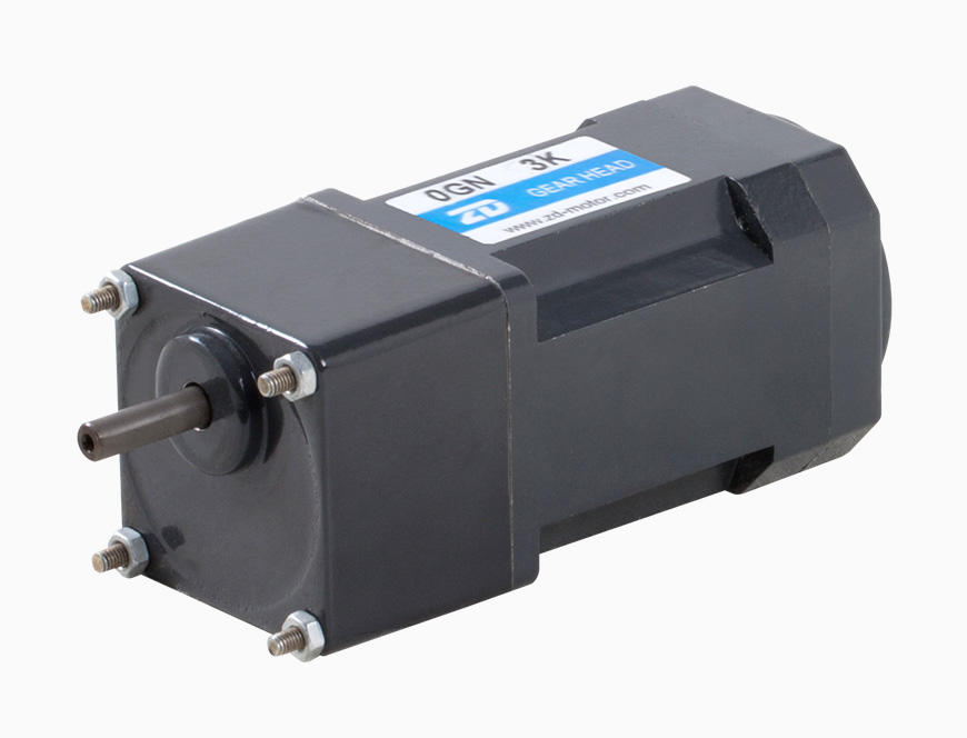 3W Induction AC Motor/Gear Motor